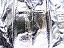 Alugewebeschlauch Q30 6m