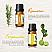 Rosmarin und Bergamotte Öle Detailansicht