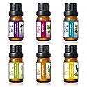 Ätherisches Ölset Lavendel, Thymian, Eukalyptus, Zitronengras, Rosmarin und Bergamotte